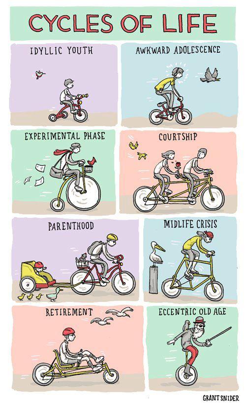 Cute Cycling Cartoon Cycles Of Life Panethos