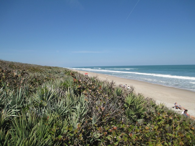 Cape Canaveral National Seashore