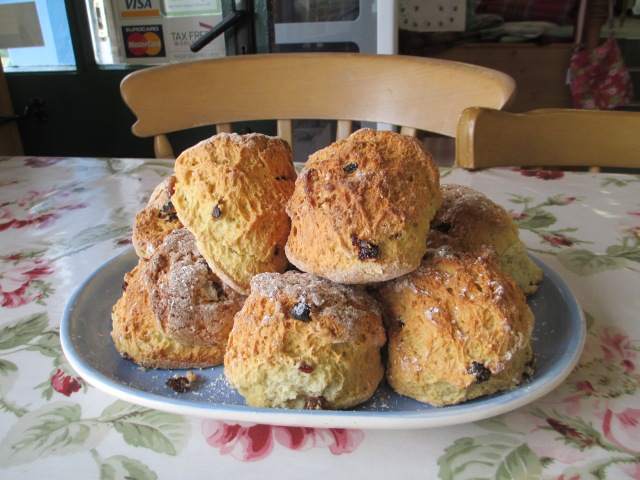 Plate of yummy scones!