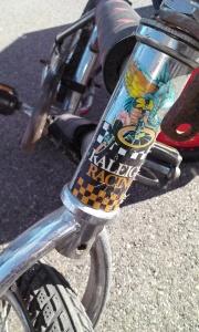 Raleigh Racing