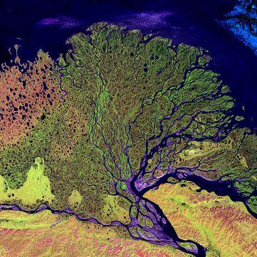 Gorgeous Lena River delta - Source: en.wikipedia.org