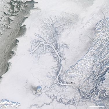 Yukon River delta in winter - Source: earthobservatory.nasa.gov